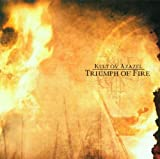 Cover von Triumph Of Fire