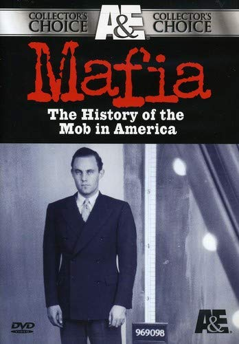 a look at the history of the american mafia