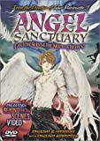 Angel Sanctuary - movie DVD cover picture