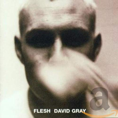 David Gray - Flesh - Zortam Music