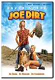 Joe Dirt - movie DVD cover picture