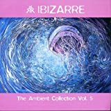 Cover von The Ambient Collection Vol.5