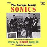 Capa do álbum Savage Young Sonics