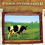 Carátula de Pickin' on Pink Floyd: A Bluegrass Tribute