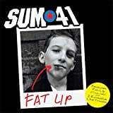 Fat Lip [UK CD]