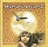 Copertina di Shamanic Dream Vol.2