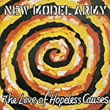 album art to The Love of Hopeless Causes