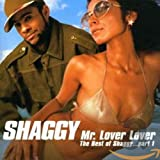 Skivomslag för The Best of Shaggy Vol.1: Mr. Lover Lover