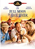 Full Moon in Blue Water - movie DVD cover picture