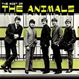 Cubierta del álbum de Most Of The Animals