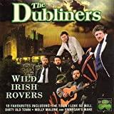 Cover de Wild Irish Rovers