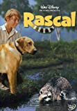 Buy Rascal on DVD from Amazon.com