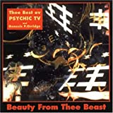 Album cover for Beauty From Thee Beast
