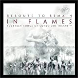 album art to Reroute to Remain: Fourteen Songs of Conscious Insanity