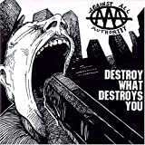 Capa de Destroy What Destroys You