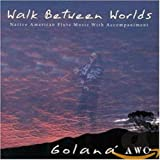 Cover of Walk Between Worlds