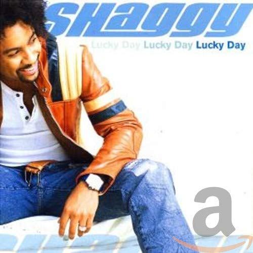 Shaggy - 40X Summer Pop - Zortam Music