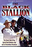 Watch The Adventures of the Black Stallion
