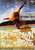 Dogtown and The Z-Boys