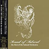 Copertina di album per Sound of Salsoul (The Best-Of the Salsoul Orchestra) (disc 2)