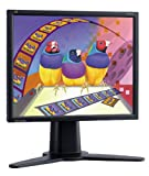 "Viewsonic VP171B 17"" LCD Monitor"