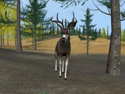 لعبة Deer Hunter 2004 كامله