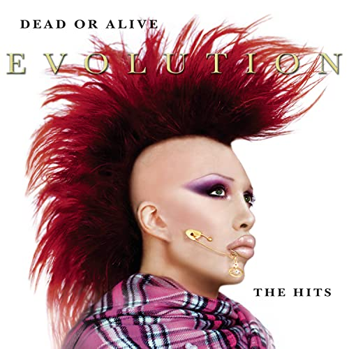 Dead Or Alive - Evolution: The Hits - Zortam Music