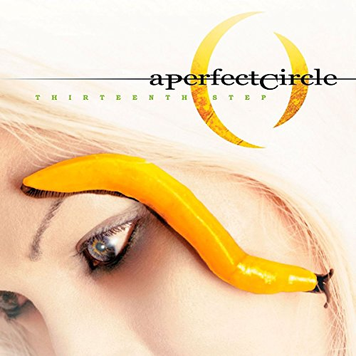 A Perfect Circle - Pet Lyrics - Lyrics2You