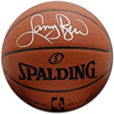 Larry Bird Boston Celtics Autographed Leather Basketball by Mounted Memories