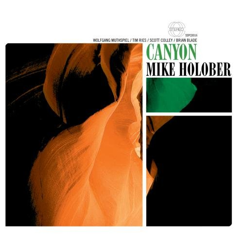 Mike Holober: Canyon
