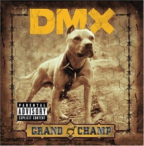 DMX - Already