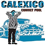 Cover of Convict Pool