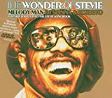 DJ Spinna & Bobbito / The Wonder of Stevie