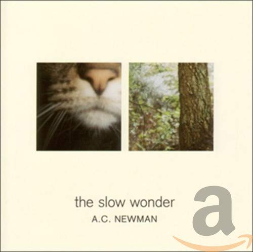 a.c. newman the slow wonder