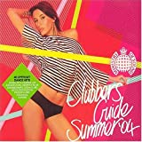 Pochette de l'album pour Clubber's Guide to Summer 2004