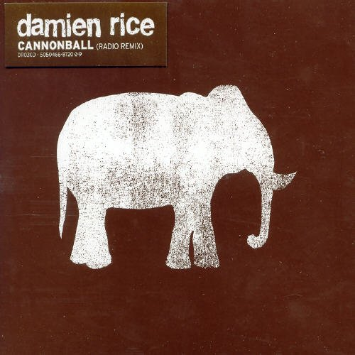 Damien Rice - Cannonball - Zortam Music