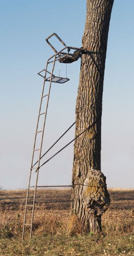 Remington 174 Ultra Mag Ladder Stand Compare At 180 00