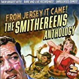 Cubierta del álbum de From Jersey It Came! The Smithereens Anthology