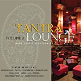 Album cover for Tantra Lounge Volume 2