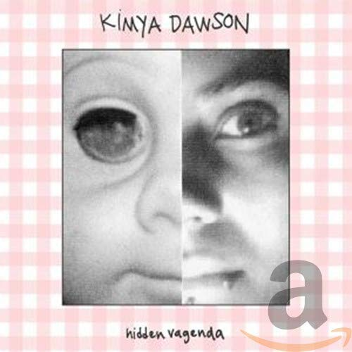 Cover of Hidden Vagenda by Kimya Dawson