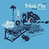 Pochette de l'album pour Tribal Mix, Vol. 2