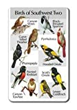 Southwest Songbirds card 1