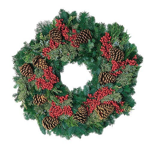Dinihanian Floral Products MCW-CAN-014 26-Inch Multi-Cone Canella Wreath