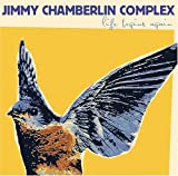 Life Begins Again - Jimmy Chamberlin Complex
