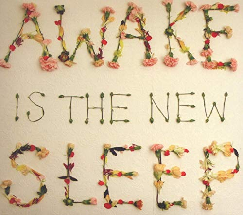 Original album cover of Awake Is the New Sleep by Ben Lee