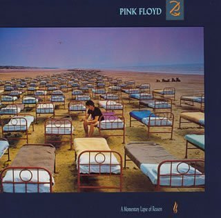 Original album cover of A Momentary Lapse of FEMA by Pink Floyd