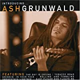 Cover von Introducing Ash Grunwald