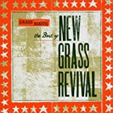 Pochette de l'album pour Grass Roots: The Best of New Grass Revival