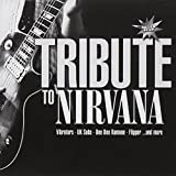 Cover de A Tribute to Nirvana