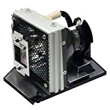 Optoma DV10 MovieTime Projector Lamp